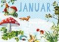 Carola Pabst Postcard | Januar (Vintage)
