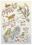 Postcard Molly Brett | Five different birds on five different branches