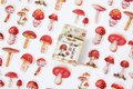Sticker Flakes Box   Mushroom