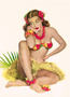 Postcard Pin Up | Hula Hawaii