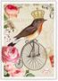 Postcard Edition Tausendschoen | Rotkehlchen