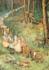 Postcard Margareth W. Tarrant | The Fairy Way_