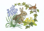 Postcard Molly Brett | Rabbit and wren with bluebells and primroses_