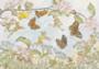 Postcard Molly Brett   The Butterfly Race_